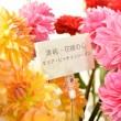 4.花ごとに記載してある花言葉