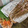 3-2_「ラ・マーレ・ファーム」で採れた新鮮な野菜
