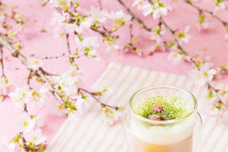 Blooming Sakura & Matcha